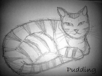 pudding-2013-12-04_23.05.16